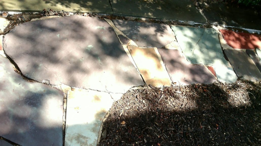 Exterior Cleaning | VK & Sons, Inc.